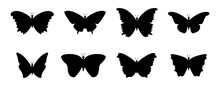 Butterfly Vector Collection