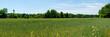 Feld und Wiesen Panorama in Oberösterreich