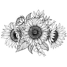 Vector Bouquet Of Sunflowers With Twigs And Leaves.