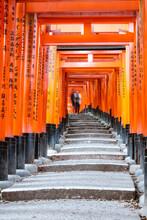 Stairs, Torii Gates, Fushimi Inari Taisha, Kyoto, Japan