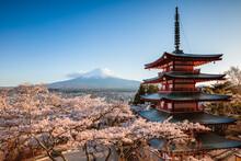 Iconic Chureito Pagoda During Cherry Blossom Season With Mt. Fuji, Fuji Five Lakes, Japan