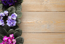 Beautiful Violet Flowers On Wooden Background, Flat Lay With Space For Text. Delicate House Plants