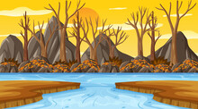 Sunset Background Scene With Many Dry Trees And River