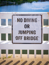 No Diving Or Jumping Off Bridge Warning Sign On Whit Board In Black