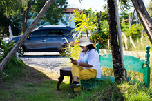 Travelers Thai Senior Old Women Mother Sit On Bench Selfie With Mobile Phone On Grass Gardening With Decorate Furniture In Garden Outdoor Of Cafe And Restaurant Coffee Shop In Nakhon Pathom, Thailand
