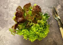 Healthy Mixed Pick Salad With Lollo Bionda, Lollo Rosso, Rocket And Vinaigrette.