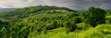 Wooded Hilly Area In The Evening Before Rain, Panoramic Landscape.