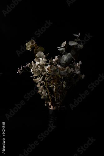 Fotografia Flores secas de varios tipo con hojas de eucalipto, cardo morado y flor blanca