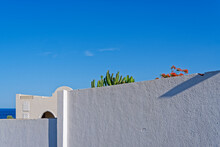 A Tall Cactus, A Flowering Tree, The Building Is Behind A White Textured Stone Wall Near The Sea Against The Backdrop Of A Clear Blue Sky. Minimalist Abstract Architectural Concept.