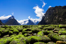 New Zealand, South Island, Milford Sound, Moss Covered Stones In Majestic Mountain Landscape