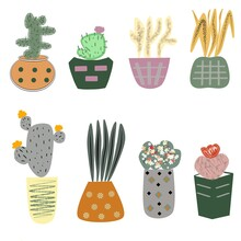 Set Of Cactus