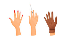 Different Human Right And Left Hands With Palm Raised Up Vector Set