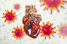 COVID-19 Viruses Affecting The Heart, Conceptual 3D Illustration