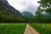 Long Dirt Road In A Green Landscape While Hiking
