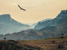 Atmospheric Landscape With Silhouettes Of Mountains On Background Of Pink Dawn Sky. Eagle Flies Over A Mountain Gorge. Sundown In Faded Tones.