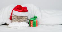 Tiny Kitten Wearing Red Santa Hat Sleeps With Gift Box Under Warm White Blanlet On A Bed At Home.Empty Space For Text