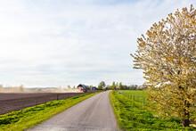 Road In Rural Area