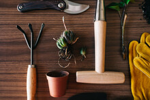 Composition Of Gardening Tools And Plants