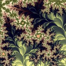 Floral Abstract Fractal Design