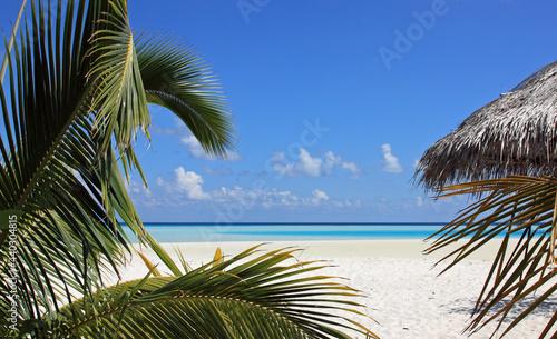 Fotografie, Obraz Plage paradisiaque des îles Maldiviennes