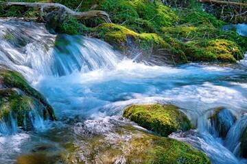 Górski strumień w Tatrach