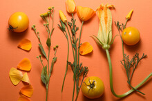 Flowers With Yellow Buds On An Orange Background, Yellow Tomatoes And Petals, Top View.
