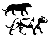Beautiful African Lioness Walking Forward Side View Portrait - Black And White Vector Animal Outline And Silhouette Design