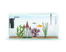 Aquarium Realistic Composition