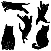 Hand Drawn Vector Cats Illustrations On Transparent Background
