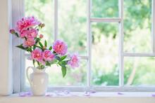 Pink Peony In Vase On Grunge White Interior