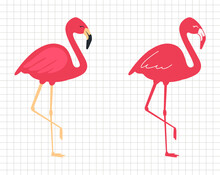 Flamingo Vector Flat Illustration.  Pink Bird. Silhouette Cutting File. Suitable For Cutting Software. Cricut, Silhouette.