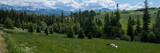 Fototapeta Londyn - Panorama, góry Zakopane