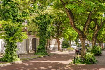 Piękna uliczka miejska w słoneczny dzień