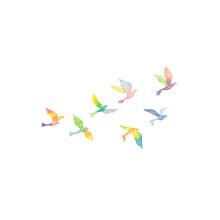 虹色の鳥の群れ