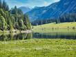 Alpen, Tirol, Natur