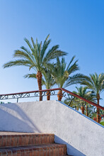 Climbing Or Descending A Stone Staircase Overlooking The Palm Trees Against The Backdrop Of A Clear Sky. Minimalistic Tropical Resort Vacation Concept.