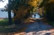 sylwetka rowerzysty jadącego przez las jesienią