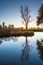 Trees Reflected In A Still Waterhole At Dawn With A City Skyline In The Background