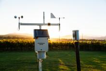 Weather Station In Vineyard Backlit By Morning Light