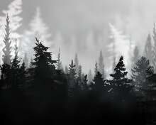 Abstract Background With Black And White Grey Scale Foggy Forest