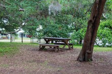 The Empty Picnic Table Under The Trees In The Park.
