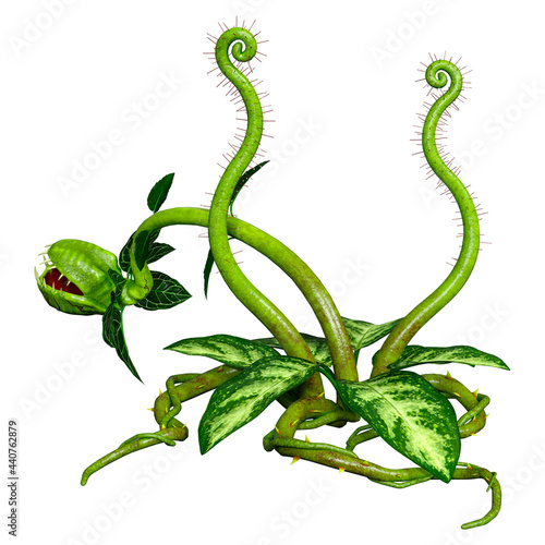 Fotografia 3D Rendering Carnivorous Plant on White