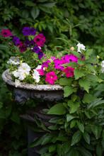 Antique, Peeling Garden Vase Of Flowers In An Old Park