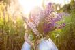 Wild Flowers Lupine In Summer Field Meadow