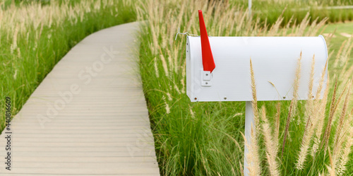 Fotografie, Obraz White metal mailbox or post box side of wooden way with grass flowers