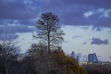 St. James Park, London ,U.K