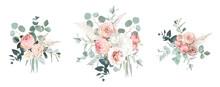 Blush Pink Garden Roses, Ranunculus, Hydrangea Flowers Vector Design Bouquets