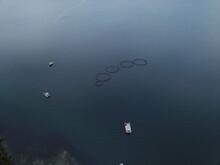 Aerial Shot Of Aquaculture Off Bruny Island At Tasmania