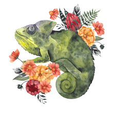 Watercolor Illustration With Frog, Chameleon And Flowers Bouquet, Isolated On White Background