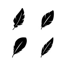 Set Line Icons Of Feather